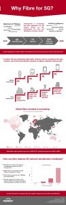 fibre infographic